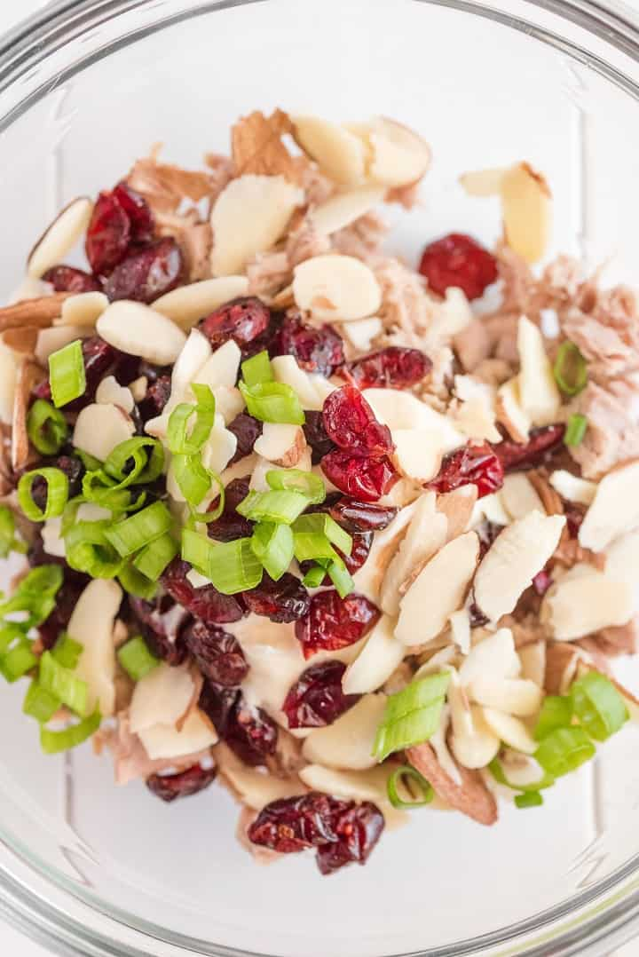 Bowl of tuna, green onions,almonds and cranberries