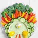 Veggie platter shaped in a turkey with vegan dip
