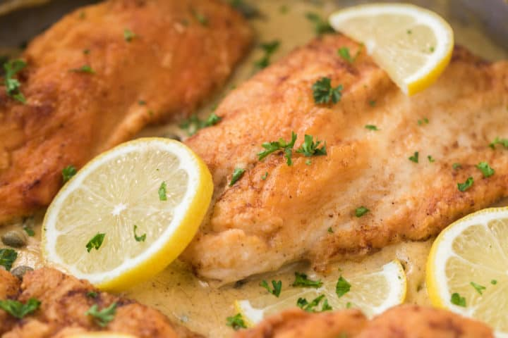 close up of lemon picaata chicken