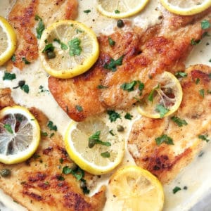 Close up of chicken lemon piccata