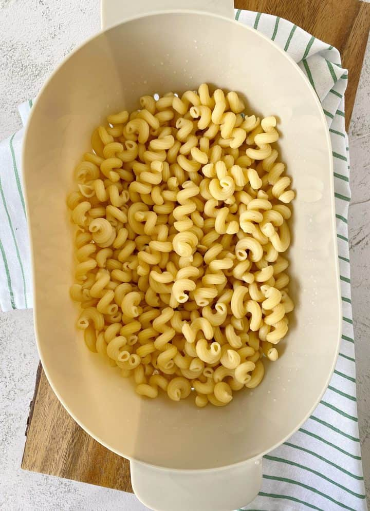 pasta in a dish