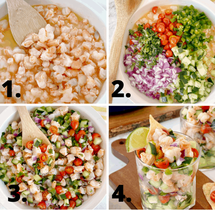 how to make ceviche diagram